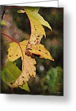 Leaves And Autumn Greeting Card