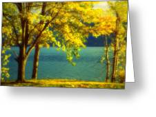 Leaves And Light Greeting Card