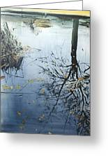 Leaves And Reeds On Tree Reflection Greeting Card