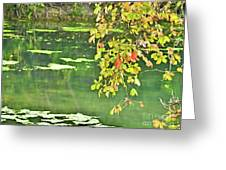 Leaves And Water Greeting Card