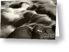 Leaves And Waterfall Greeting Card