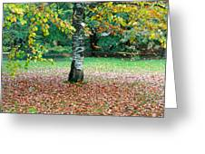 Leaves Blowing Off The Autumn Tree Greeting Card