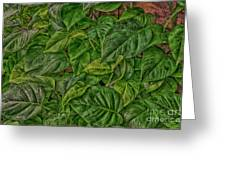 Leaves By The Way Greeting Card