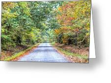 Leaves Changing In The Fall Near Collierville,tn Greeting Card