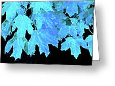 Leaves In Blue Greeting Card