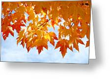 Leaves Nature Art Orange Autumn Tree Leaves Greeting Card