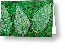 Leaves Of Spring Greeting Card