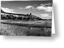 Legend Of The Bear Wyoming Devils Tower Panorama Bw Greeting Card
