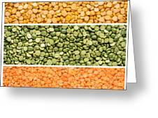 Legumes Triptych Greeting Card