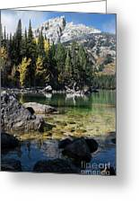 Leigh Lake Cove Greeting Card
