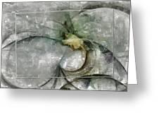 Lemniscatic Fancy  Id 16098-021154-72823 Greeting Card