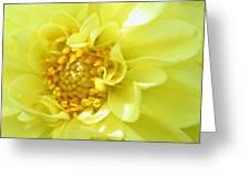 Lemon Dream Greeting Card