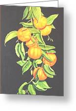 Lemon Mandarine Suite Greeting Card