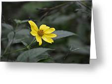 Lemon Queen Greeting Card