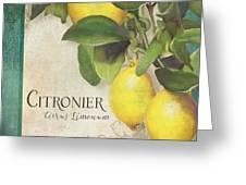 Lemon Tree - Citronier Citrus Limonum Greeting Card
