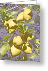 Lemons Purple Pastel Greeting Card