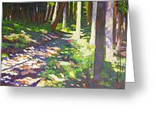 Lena Lake Trail I Greeting Card