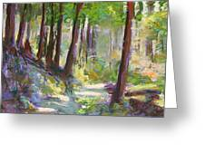 Lena Lake Trail Shadows Greeting Card