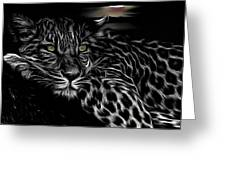 Leopard At Night Greeting Card