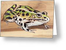 Leopard Frog No 1 Greeting Card