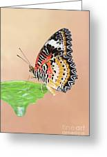 Leopard Lacewing Butterfly #2 V2 Greeting Card