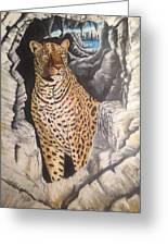 Leopard On The Rocks Greeting Card