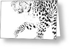 Leopard Spots Black And White Greeting Card