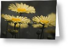 Leopards Bane Desaturated Greeting Card