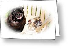 Leroy And Mrs. Jones Greeting Card