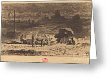 Les Anes De La Butte-aux-cailles (donkeys At La Butte-aux-cailles) Greeting Card