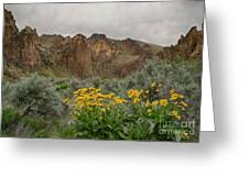 Leslie Gulch Sunflowers Greeting Card