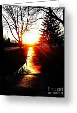 Let The Sun Light Your Path Greeting Card