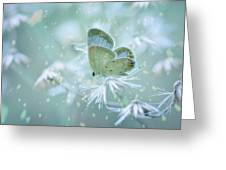 Let The Winter Gone Greeting Card