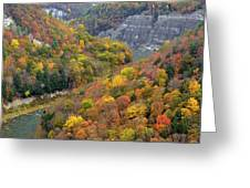 Letchworth Falls Sp Fall Colored Gorge Greeting Card