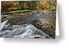Letchworth Falls Sp Wolfe Creek Greeting Card