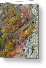 Letchworth Falls State Park Fall Colors Greeting Card