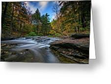 Letchworth's Wolf Creek  Greeting Card