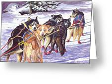 Let's Go Musher Greeting Card