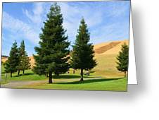 Let's Play Golf 010 Greeting Card