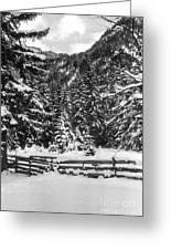 Leutasch Snow Trail 2 Greeting Card