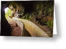 Levada Da Serra Do Faial, Madeira Greeting Card