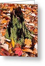Lichen Castle In Autumn Leaves Greeting Card