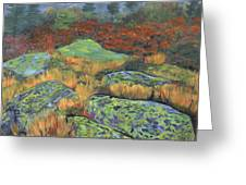 Lichen Rocks Greeting Card