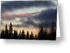 Licorice In The Sky Greeting Card
