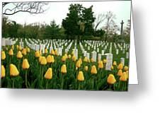 Life And Death At Arlington Greeting Card