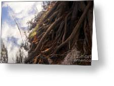 Life By The River Greeting Card by David Lee Thompson