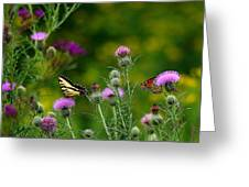 Life In The Meadow Greeting Card
