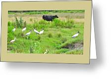 Life In The Slough Greeting Card