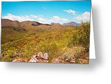 Life In The Southwest Greeting Card
