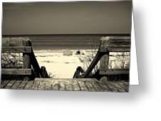 Life Is A Beach Greeting Card by Susanne Van Hulst